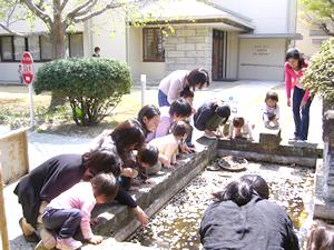 kobato10.png